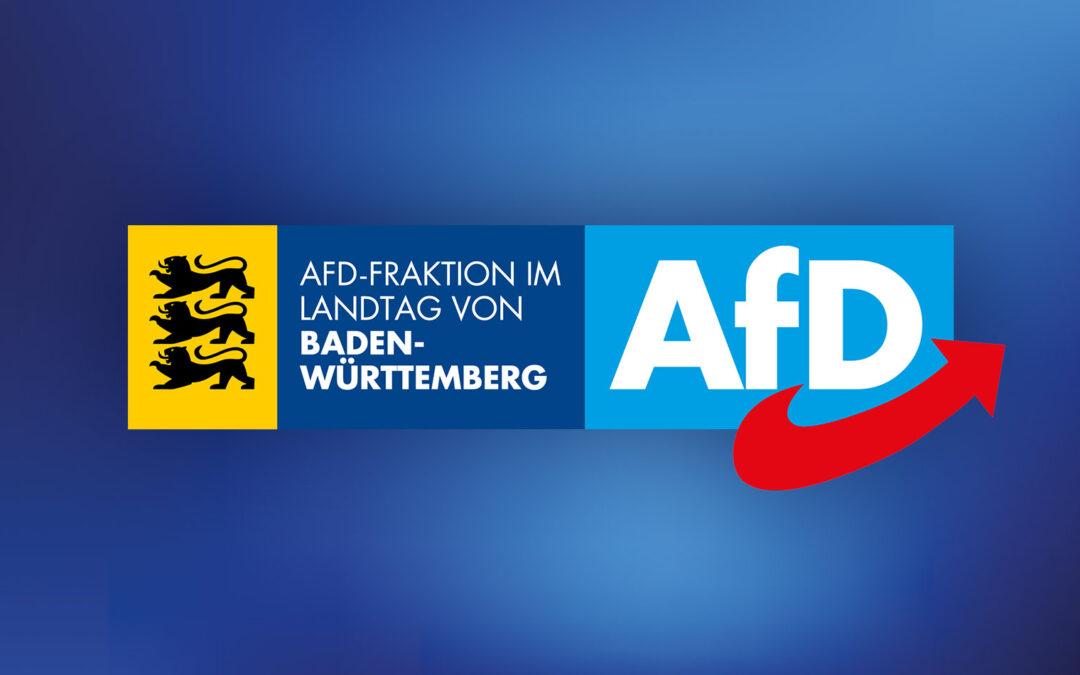Pressekonferenz zur Konstituierung der AfD-Fraktion für den 17. Landtag von Baden-Württemberg