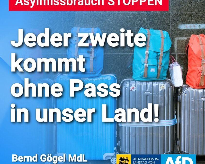 """Jeder zweite """"Flüchtling"""" kommt OHNE PASS in unser Land!"""