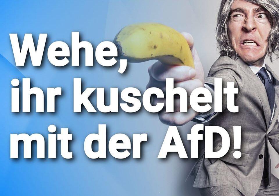 Grüne erpressen die CDU: Wehe, ihr kuschelt mit der AfD